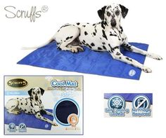 1000 Images About The Dog House Pet Beds And Accessories