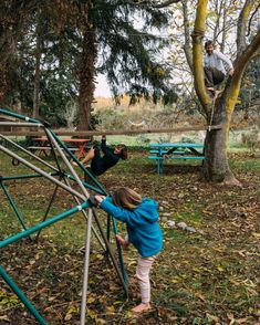 Katy's backyard- ladder between trees with bungee cord to promote movement
