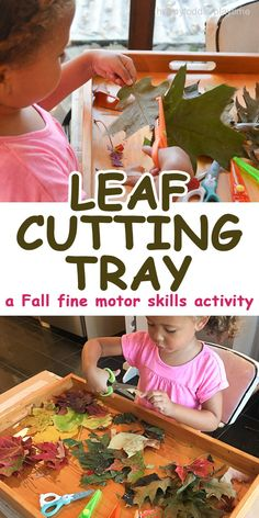 A quick and easy Fall fine motor scissor skills activity cutting leaves. It is something you can do after a nature walk.