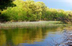 Buckhorn State Park, Wisconsin