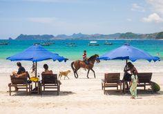 Beach Mullet Selong, Lombok Island his Hawaii