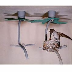 "The Hummingbird House comes with two metal frames shaped like a forked branch of a tree where hummers build an open-cupped nest. Includes a leaf ""umbrella"" for overhead protection, a landing branch & starter nesting material. Mounting hardware & complete instructions provided. Hummers won't nest in a windy location: the best place to mount their house is under an eave of your house or in a corner. Two nesting frames are provided because hummers often start 2 nests & then choose the least…"