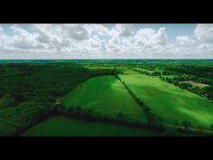 ZAD - NDDL- Notre-Dame-Des-Landes, une Zone Humide A Défendre