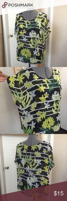 """Alfani Striped Floral Blouse Alfani Striped Floral Blouse. Sheer top layer with boxy fit, connected tank top of same design underneath. Size 12 measures: 25"""" long, 23"""" wide. 100% poly. 508/300fm/052916 Alfani Tops Blouses"""