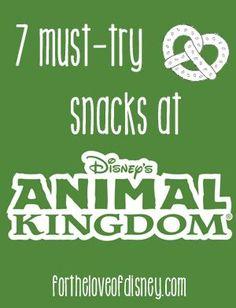 best animal kingdom snacks