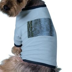 Reflections on the ice dog tshirt
