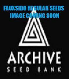 Fauxsidos - Archive Seeds Dosidos hybrid