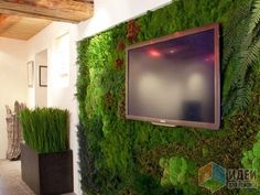 Вертикальное озеленение стабилизированными растениями House Design, Outdoor Bar, Wall Design, Herb Wall, Green Roof, Garden Room, Outdoor Design, Green Wall Plants, Interior Plants
