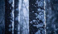 Falling Snow by Joni Niemelä on 500px