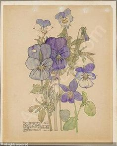"Charles Rennie Macintosh, ""Wild pansy and wood violet,"" sold by Sotheby's, London, on Monday, December 16, 2002"