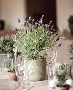 Lavender / wedding table decorations / living plants / rustic /