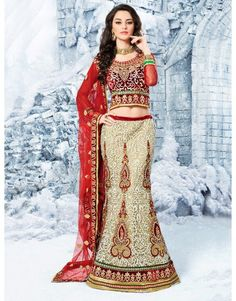 Beige Net Lehenga Choli with Embroidery Work