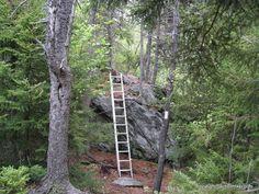 Ladder on the Massachusetts Appalachian Trail