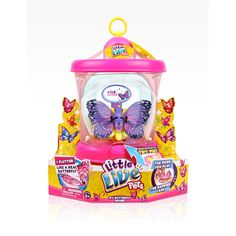 Little live pets my butterflies - Now Available Online: http://fastdiscountfinder.com/category/toys/little-live-pets-my-butterfly