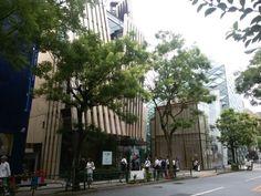 Omotesando (表参道) in 東京都