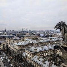 Notre Dame de Paris,We'll always have Paris! Paris in December lifestyle blog post!  #paris #france #travel #blogger #europe