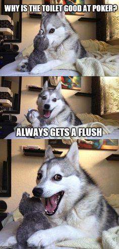 BEWARE OF DOG... UGH... LMAO