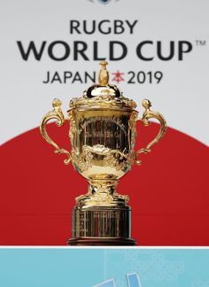 Rugby: RWC 2019 organizers told to quicken the . 2019 Rwc, Go Bokke, Rugby Rules, Rugby Funny, South Africa Rugby, World Cup Live, Vive Le Sport, All Blacks Rugby, Rugby Sport