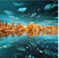 Paisagens deslumbrantes de infravermelho com árvores de Ouro e Prata