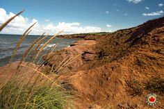 The red sand cliffs of Cavendish Read more about our time visiting PEI National Park. Cavendish Beach, Hopewell Rocks, Prince Edward Island, Tourist Spots, White Sand Beach, Nova Scotia, Long Weekend, Wonderful Places, National Parks