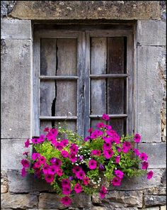 Window surrounded by stone and window box of pink petunias