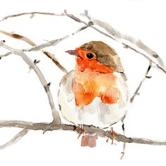 Art Print  Robin on a branch Print of watercolor por TheJoyofColor