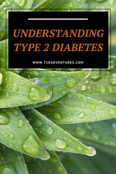 A very basic explanation of Type 2 Diabetes and some shocking statistics regarding Home Remedies For Diabetes, Cure Diabetes Naturally, Diabetes Management, Stress Management, Health Tips, Health And Wellness, Healthy Low Carb Recipes, Keto Recipes, Diabetes In Children