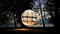 The Sublime Cocoon Tree Floats above Ground