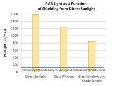 How much light do I need for my algae? Photosynthesis, Seaweed, Bar Chart, Plant, This Or That Questions, Day, Bar Graphs, Plants, Replant