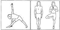 Beginning Yoga Poses