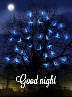 """""""I am a spark from the Infinite. I am not flesh and bones. I am light."""" - Paramahansa Yogananda AM ~] """"I am a spark from the Infinite. I am not flesh and bones. I am light."""" - Paramahansa Yogananda I AM ~ Good Night All, Good Night Image, Good Night Quotes, Learned Helplessness, A Course In Miracles, Images Gif, Pictures Images, Night Pictures, Romantic Pictures"""
