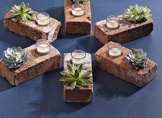 Pinterest Picks: Succulent Furniture from Nine Red