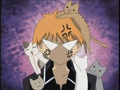 I still love you kittens!!!