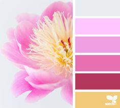 today's inspiration image for { color flora } is by . thank you, Zoë, for another beautiful image share! Colour Pallette, Colour Schemes, Color Combos, Design Seeds, Decoration Palette, Plans Architecture, Flora Design, Creative Colour, Color Balance