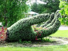 topiary hand