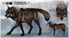 Tall, Dark, and Handsome Brown Wolf Auction CLOSED by KFCemployee.deviantart.com on @deviantART