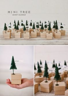 Mini Christmas Tree Advent with free printable flags / Oh Happy Day Calendrier avent Noël . Christmas Tree Advent Calendar, Diy Advent Calendar, Mini Christmas Tree, All Things Christmas, Winter Christmas, Calendar Ideas, Minimal Christmas, Homemade Advent Calendars, Nordic Christmas
