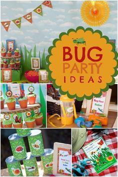 Boy's Bug Themed Birthday Party