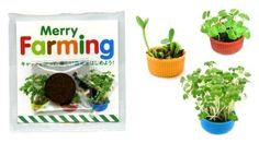 Merry Farming: Micro-gardening for the Sanrio set | MNN - Mother Nature Network