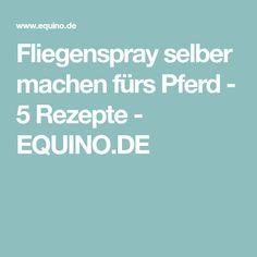 Fliegenspray selber machen fürs Pferd - 5 Rezepte - EQUINO.DE