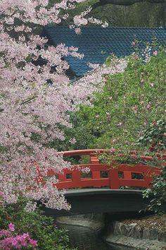 Descanso Gardens in La Canada, CA
