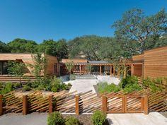 palissade en bois moderne, maison design en bois, arbres et plantes vertes
