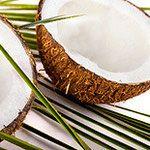 Biologisches Kokosöl - Heileigenschaften - Meine-Lebensquelle.de