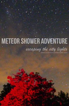 Read our exciting late night adventure/road trip and get tips for your own meteor shower experience. It is an unforgettable experience unlike any other.