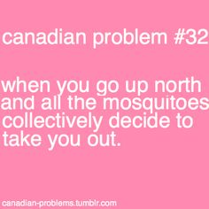 lol or when you drive throught the provinces and your car becomes dead mosquito colored