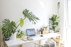 Trendy Home Office Plants Green Ideas Diy Interior, Interior Decorating, Interior Design, Decoration Inspiration, Room Inspiration, Workspace Inspiration, Diy Regal, Office Plants, Home Office Space