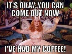 """Everyone thought Glenda was the """"good"""" witch but she has a lil spitfire in her. Wizard of Oz I Love Coffee, Best Coffee, Coffee Break, Coffee Coffee, Coffee Talk, Morning Coffee, Happy Morning, Coffee Shop, Wizard Of Oz Memes"""