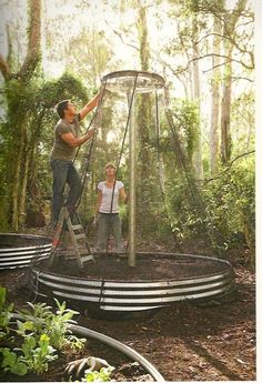 Love the protective nets on the circular gardens. Check out Brigette's review of Jamie Durie's Edible Garden Design here: http://chaptersandscenes.wordpress.com/2014/03/20/brigette-reviews-edible-garden-design