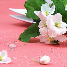 Selbst ein Regenschauer kann der Gartentischdecke ATMOSPHERE GIARDINO nichts anhaben! Die Flüssigkeit perlt einfach ab. Zu bestellen bei sander-tischwaesche.de