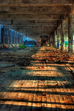 The Packard Plant Detroit, Michigan